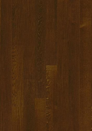 Oak Cocoa